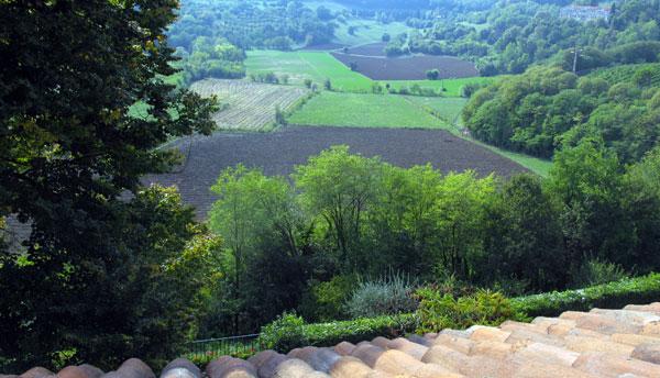 Villa in affitto per vacanza a vicenza posizione strategica - Alberi nani da giardino ...